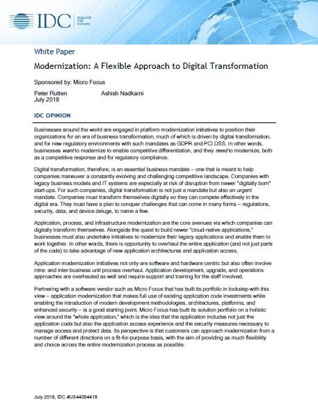 Modernization A Flexible Approach to Digital Transformation preview